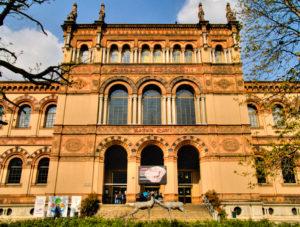 museo-storia-naturale-milano_la-chiave-di-sophia